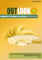 OUTLOOK PISANG 2016